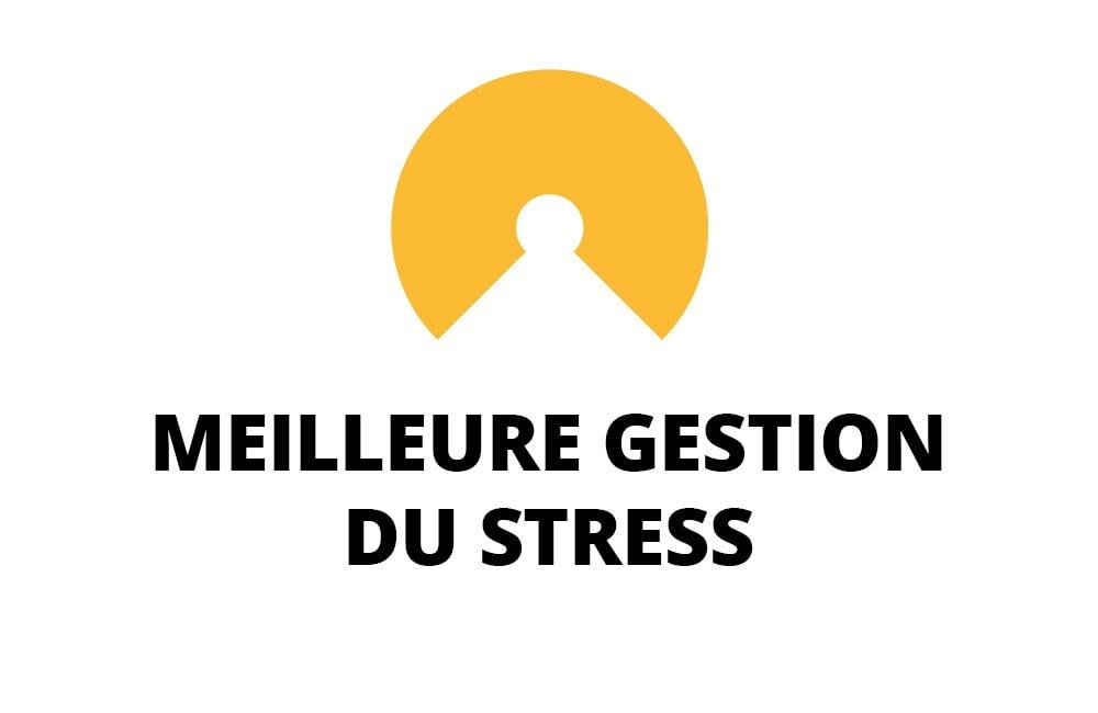 Amélioration de la Gestion du Stress à Nantes